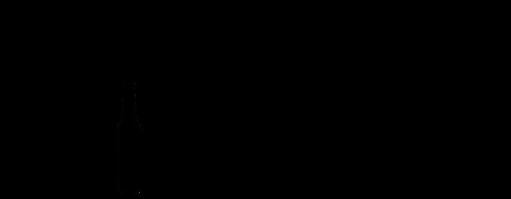 Liquory logo